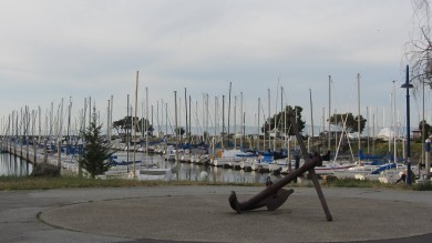 On the bay side, I ride by a marina